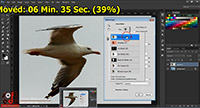 Refine Edge in Curs Adobe Photoshop CC